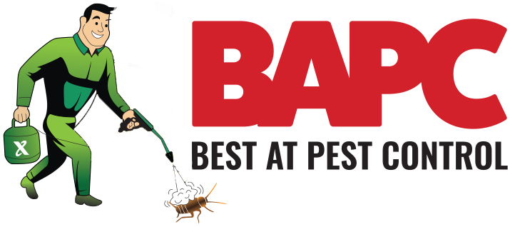Best Pest Control USA